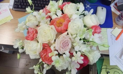 Pretty Flowers | BeccaBlogs.com
